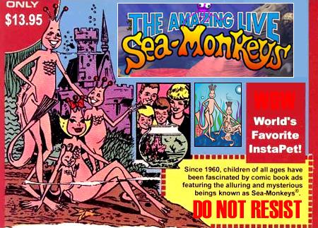 sea_monkeys2